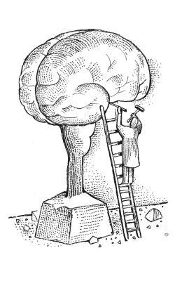 45eb3ac14433b00c1d227b929452ee8e--your-brain-exercises